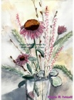 Cone Flowers and Coral Bells
